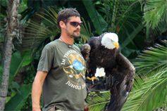 Орел на руках человека