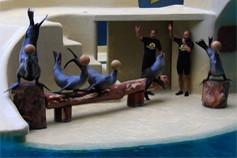 Морские львы Лоро парка