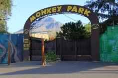 Парк обезьян. Он же монкей парк или лемурятник.