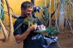 Кормим обезьян и лемуров